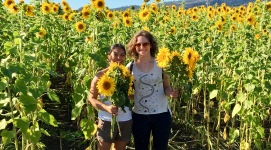 Writing break in the sunflower fields with Karin Spirn, Half Moon Bay