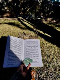 Nica reading Wait